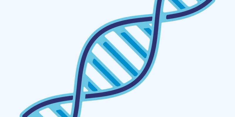 Quanto custa um exame de DNA?